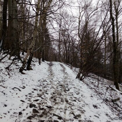 Cesta na Milešovku