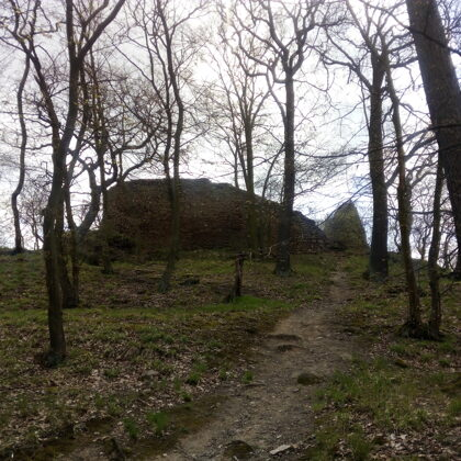 Zřícenina hradu Opárno